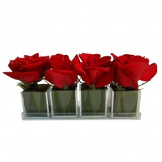 Fragmentos de Rosas Vermelhas